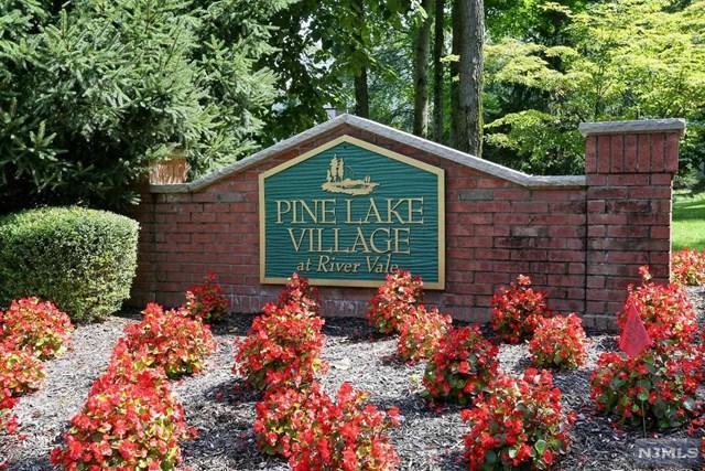 22 Pine Lake Ter, River Vale, NJ 07675 (MLS #1733759) :: William Raveis Baer & McIntosh