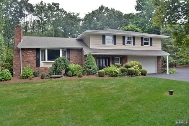 11 Windsor Gate, Upper Saddle River, NJ 07458 (#1733812) :: RE/MAX Properties