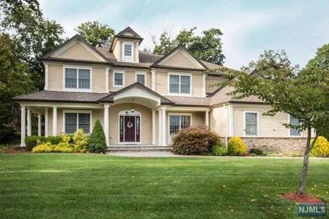 255 Ellin Dr, Park Ridge, NJ 07656 (MLS #1738482) :: The Dekanski Home Selling Team