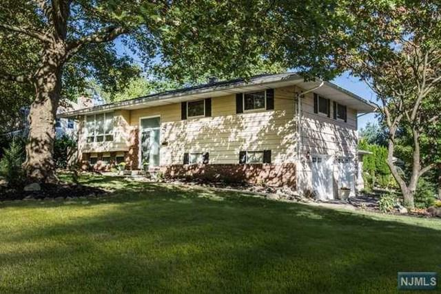 5 Sturms Pl, Park Ridge, NJ 07656 (MLS #1738730) :: The Dekanski Home Selling Team