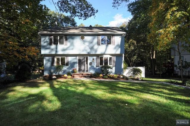 94 Oak Ridge Rd, Ramsey, NJ 07446 (#1740898) :: RE/MAX Properties