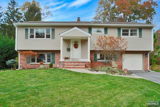 417 Birchtree Ln, Northvale, NJ 07647 (MLS #1745402) :: William Raveis Baer & McIntosh