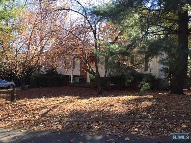 121 Cross St, Demarest, NJ 07627 (#1745477) :: Group BK