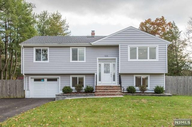 100 Blanch Avenue, Closter, NJ 07624 (#1745478) :: Group BK
