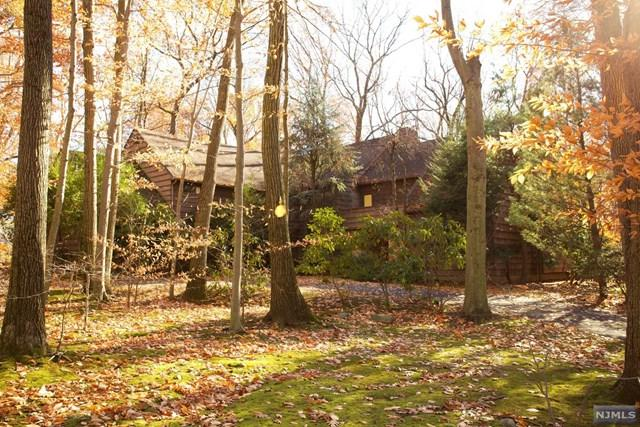 20 Rock Ledge Rd, Saddle River, NJ 07458 (#1746513) :: RE/MAX Properties