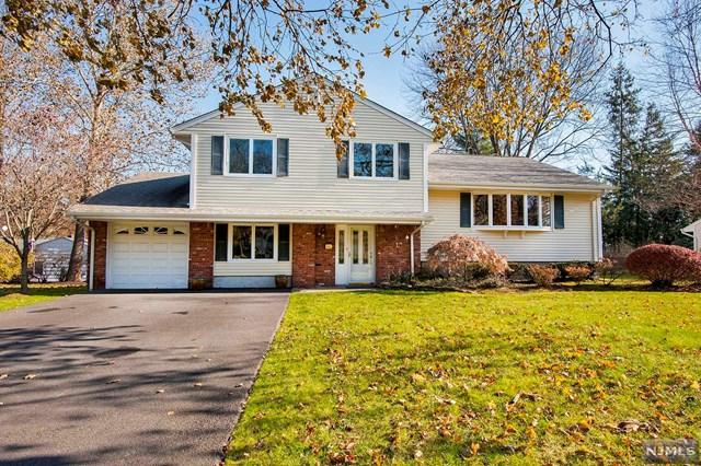 64 Stewart St, Demarest, NJ 07627 (#1746634) :: Group BK