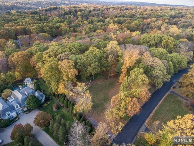 65 Fox Hedge Road, Saddle River, NJ 07458 (#1806200) :: RE/MAX Properties
