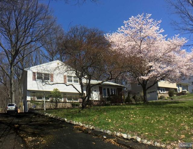 1117 Linwood Avenue, Ridgewood, NJ 07450 (MLS #1815303) :: William Raveis Baer & McIntosh