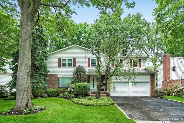 62 Elm Street, Englewood Cliffs, NJ 07632 (MLS #1823069) :: William Raveis Baer & McIntosh