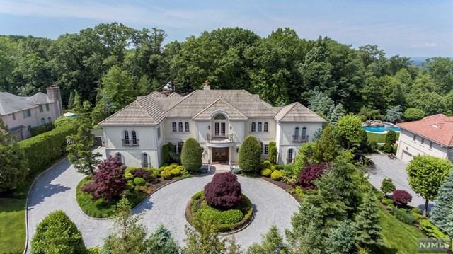 160 Vaccaro Drive, Cresskill, NJ 07626 (MLS #1824067) :: The Dekanski Home Selling Team