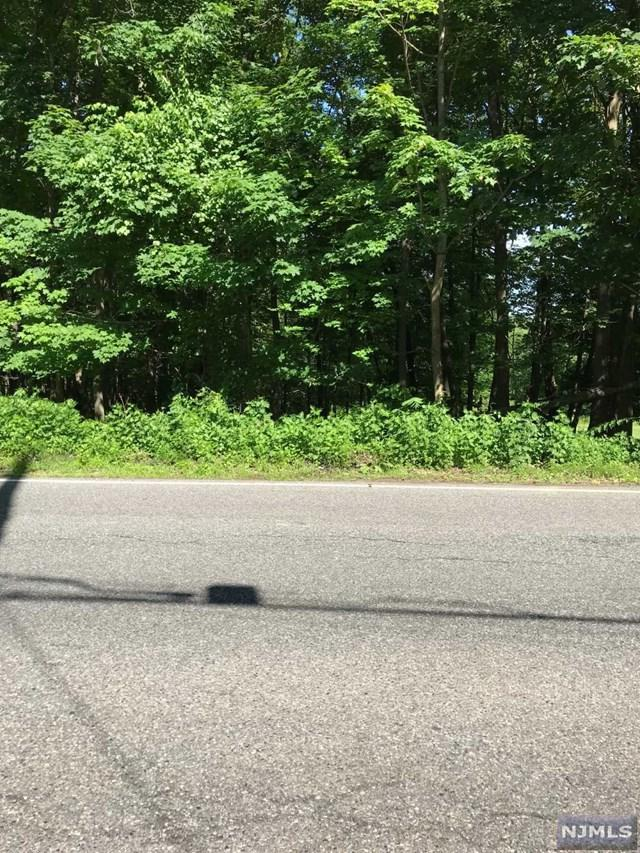 176 Pine Brook Road, Montville Township, NJ 07082 (MLS #1824235) :: William Raveis Baer & McIntosh
