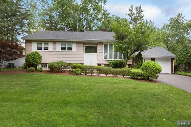 60 Lincoln Terrace, Harrington Park, NJ 07640 (MLS #1824314) :: William Raveis Baer & McIntosh