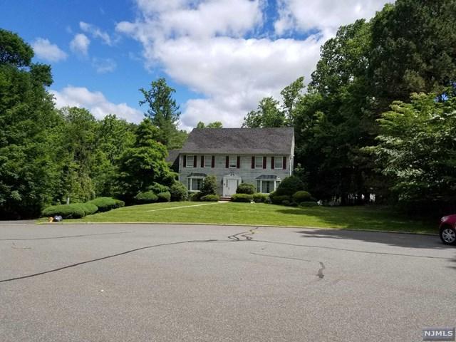 53 Gristmill Lane, Upper Saddle River, NJ 07458 (MLS #1825062) :: William Raveis Baer & McIntosh