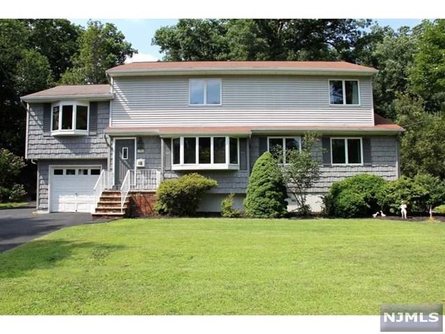167 Mansfield Road, Park Ridge, NJ 07656 (#1832443) :: Group BK