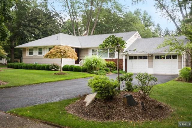236 Birchwood Road, Old Tappan, NJ 07675 (MLS #1832491) :: William Raveis Baer & McIntosh