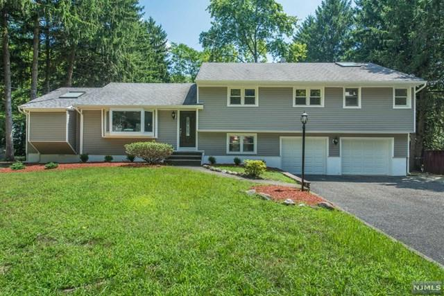 741 Wayne Place, Twp Of Washington, NJ 07676 (#1834308) :: Group BK