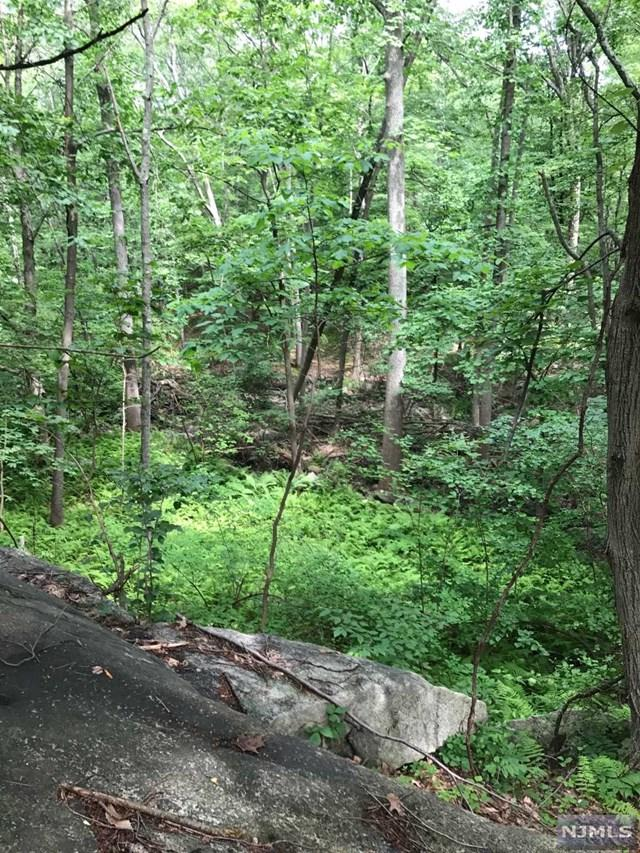 19 Split Rock Road, Mahwah, NJ 07430 (#1836845) :: Berkshire Hathaway HomeServices Abbott Realtors