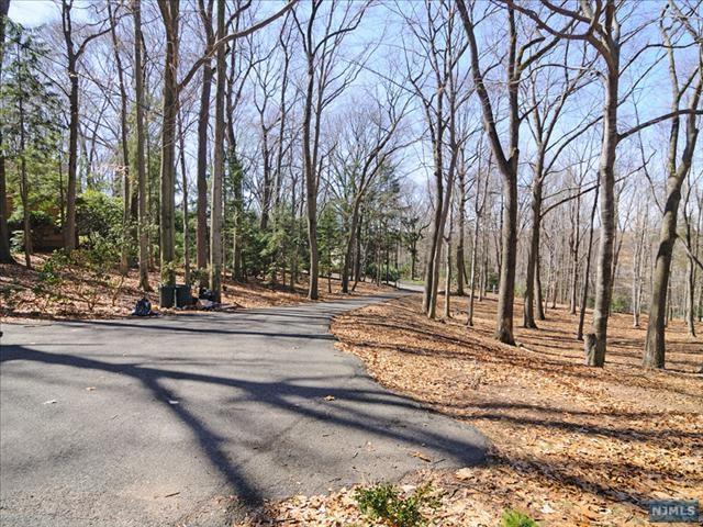 11 Dogwood Drive, Saddle River, NJ 07458 (#1839068) :: RE/MAX Properties