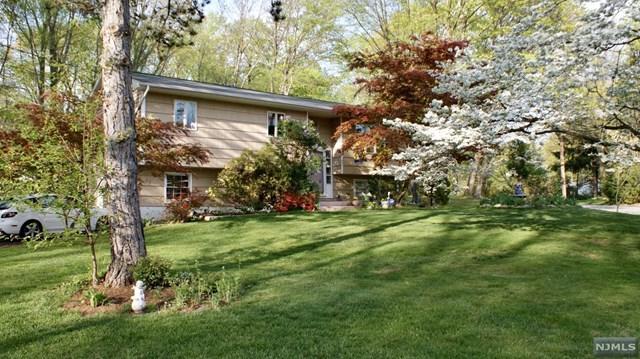 49 Laura Drive, Airmont, NJ 10952 (#1846379) :: RE/MAX Properties