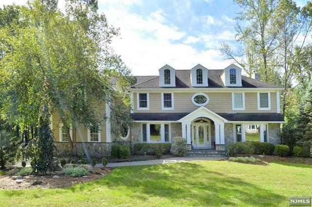 56 Pleasant Avenue, Upper Saddle River, NJ 07458 (MLS #1846709) :: William Raveis Baer & McIntosh