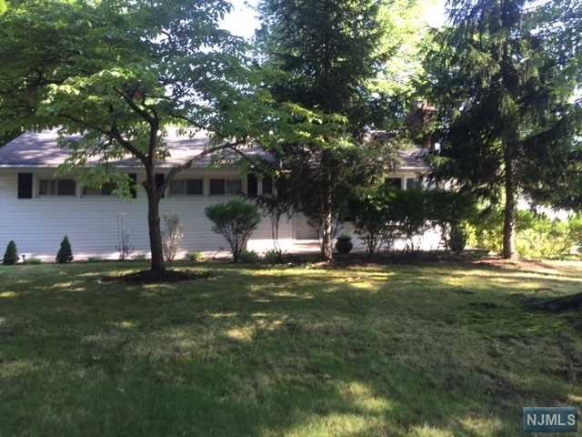 217 W Clinton Avenue, Tenafly, NJ 07670 (#1846823) :: Group BK