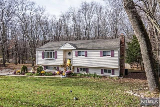 766 Old Mill Road, Franklin Lakes, NJ 07417 (#1847774) :: Group BK