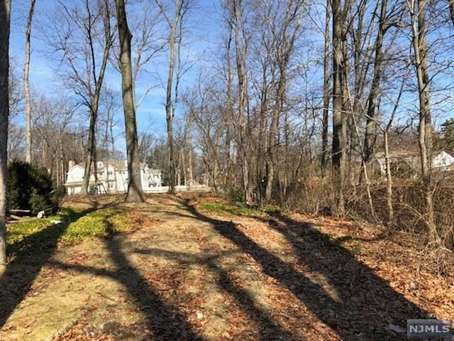 503 Oldwoods Road, Wyckoff, NJ 07481 (MLS #1848203) :: The Dekanski Home Selling Team
