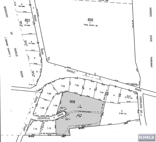 Deerfield Drive, Woodcliff Lake, NJ 07677 (MLS #1848283) :: The Dekanski Home Selling Team