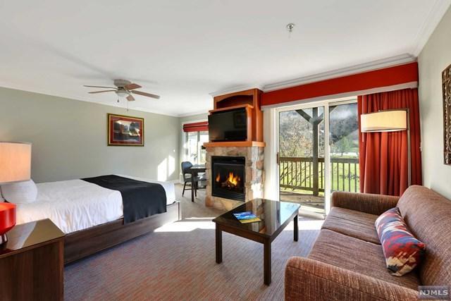 2 Chamonix Drive #429, Vernon, NJ 07462 (MLS #1849609) :: William Raveis Baer & McIntosh