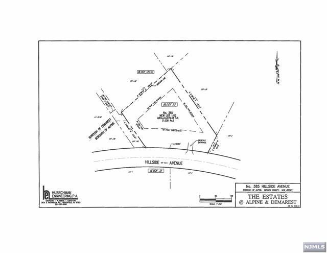 385 Hillside Avenue, Alpine, NJ 07620 (MLS #1902556) :: William Raveis Baer & McIntosh