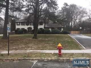 2 Radcliff Drive, Roxbury Township, NJ 07876 (MLS #1904658) :: William Raveis Baer & McIntosh