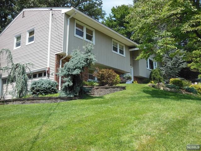 11 Michael Street, Woodcliff Lake, NJ 07677 (MLS #1905106) :: William Raveis Baer & McIntosh