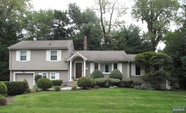 10 Pierce Avenue, Cresskill, NJ 07626 (MLS #1906131) :: William Raveis Baer & McIntosh
