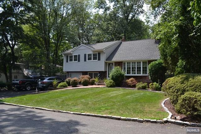 41 Oak Avenue, Park Ridge, NJ 07656 (MLS #1909113) :: William Raveis Baer & McIntosh