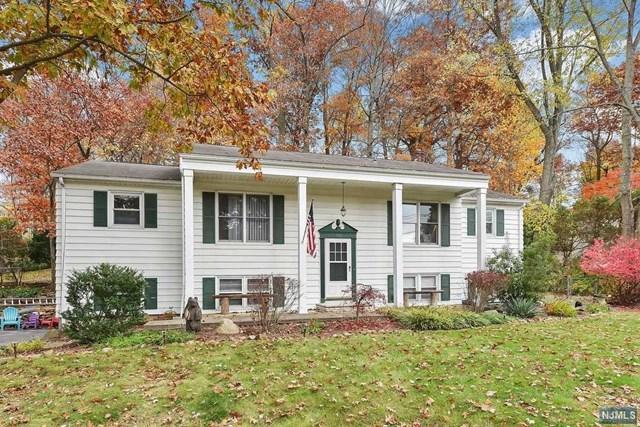 782 High Mountain Road, North Haledon, NJ 07508 (MLS #1910147) :: Team Francesco/Christie's International Real Estate