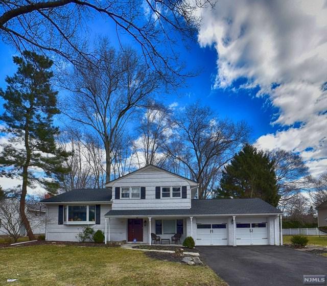 37 Deberg Drive, Old Tappan, NJ 07675 (MLS #1910831) :: Team Francesco/Christie's International Real Estate