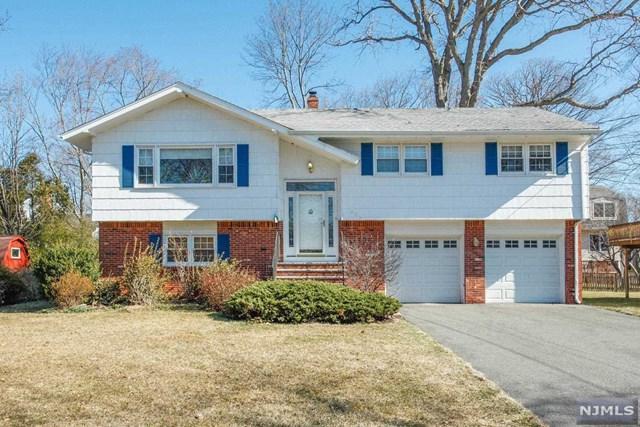 259 Nottingham Road, Ramsey, NJ 07446 (MLS #1911163) :: Team Francesco/Christie's International Real Estate