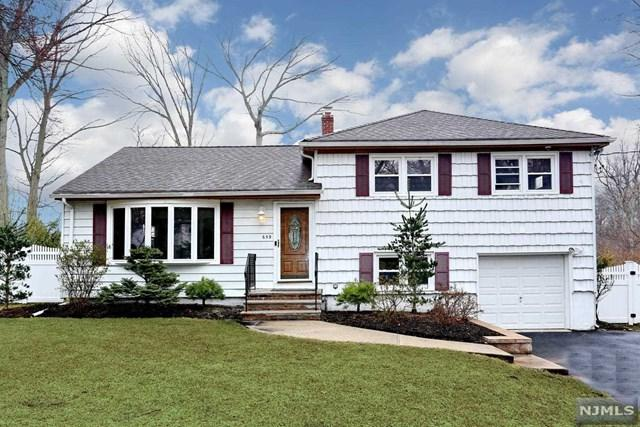 659 Russell Snow Drive, River Vale, NJ 07675 (#1911691) :: Group BK