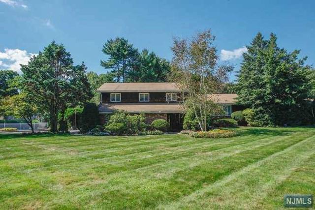 710 High Mountain Road, Franklin Lakes, NJ 07417 (MLS #1912204) :: Team Francesco/Christie's International Real Estate