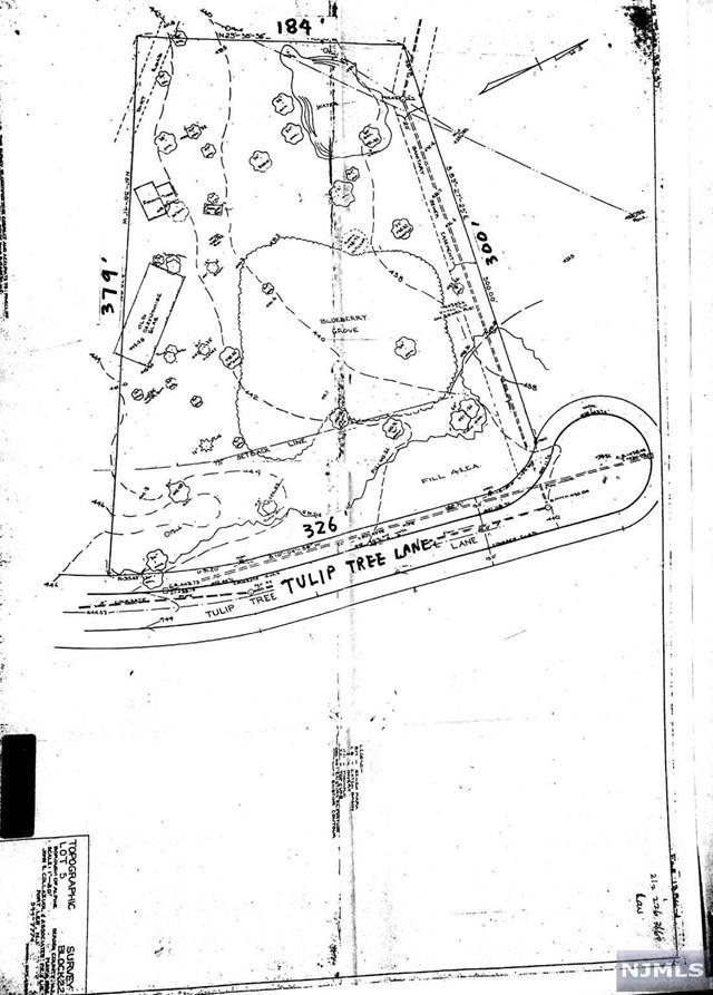 11 Tulip Tree Lane, Alpine, NJ 07620 (#1914130) :: Berkshire Hathaway HomeServices Abbott Realtors