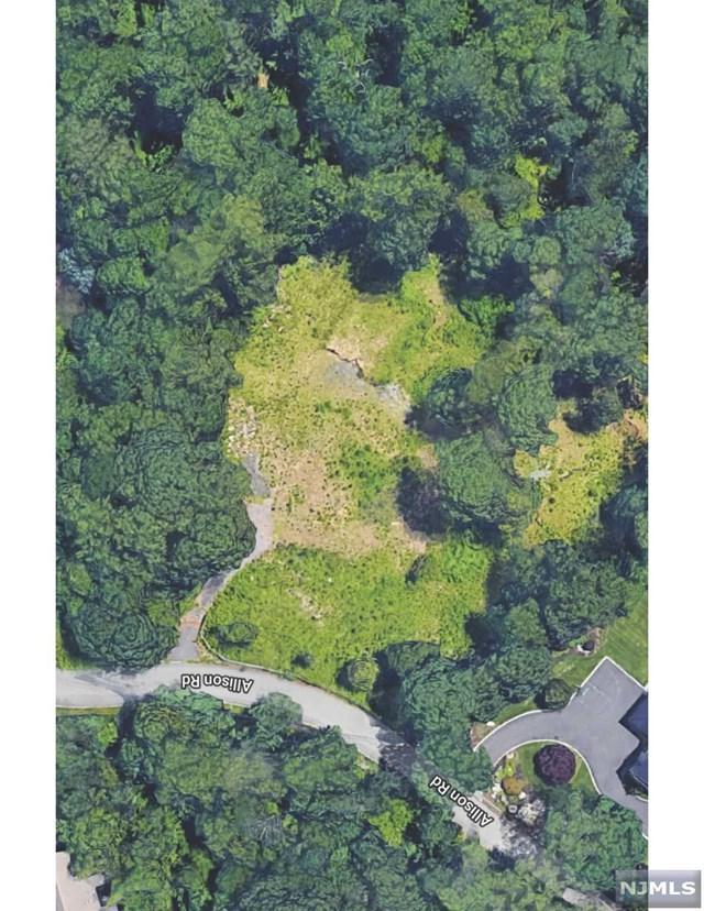 40 Allison Road, Alpine, NJ 07620 (#1914185) :: Berkshire Hathaway HomeServices Abbott Realtors
