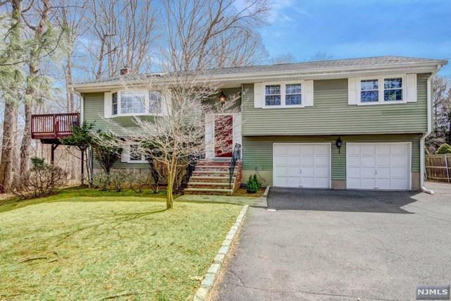 11 Cripplebush Road, Old Tappan, NJ 07675 (#1915588) :: Berkshire Hathaway HomeServices Abbott Realtors