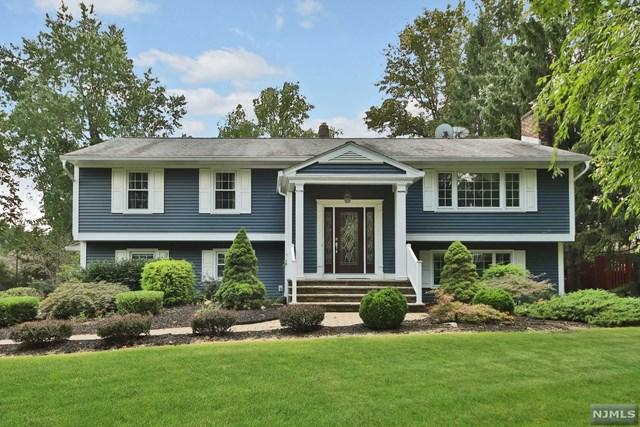 6 Dahl Drive, Montville Township, NJ 07045 (#1915866) :: Berkshire Hathaway HomeServices Abbott Realtors