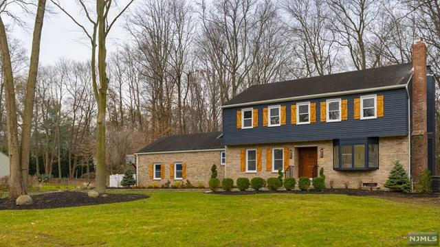 51 Dearborn Drive, Old Tappan, NJ 07675 (MLS #1916944) :: William Raveis Baer & McIntosh