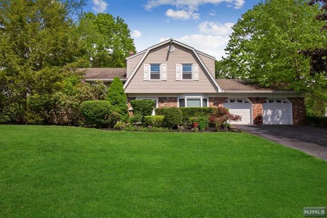 15 Blauvelt Drive, Harrington Park, NJ 07640 (MLS #1924577) :: William Raveis Baer & McIntosh