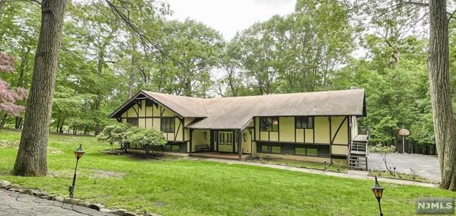 873 Cherokee Lane, Franklin Lakes, NJ 07417 (MLS #1928937) :: William Raveis Baer & McIntosh
