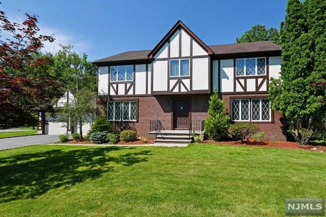 60 Dorotockey Drive, Harrington Park, NJ 07640 (MLS #1931774) :: William Raveis Baer & McIntosh