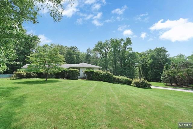 10 Deertrail Road, Saddle River, NJ 07458 (MLS #1932236) :: The Dekanski Home Selling Team