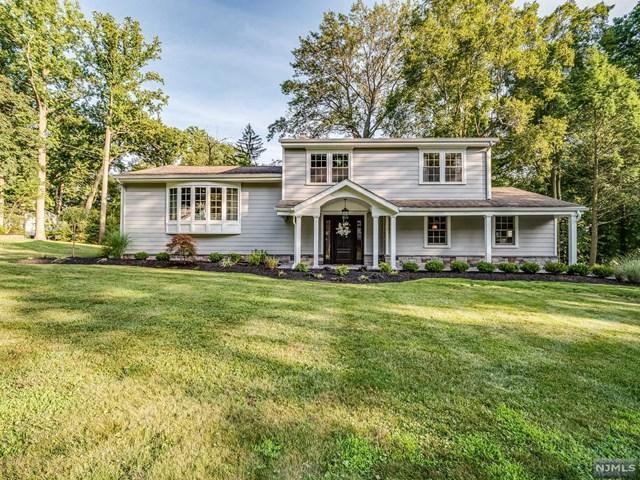 537 Forest Drive, River Vale, NJ 07675 (MLS #1933157) :: William Raveis Baer & McIntosh