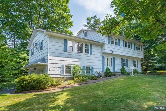 227 Prospect Avenue, Park Ridge, NJ 07656 (#1934698) :: Group BK